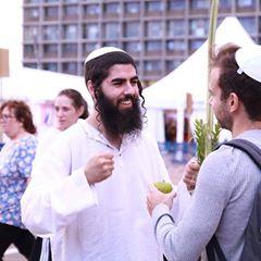 ממליץ על אליעד לוי